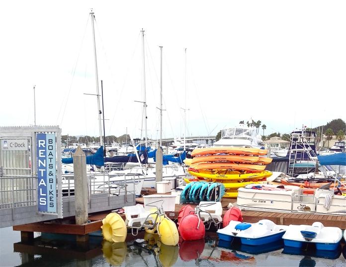 many sailboats